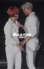 like a rose ; sebaek by -gotsevens