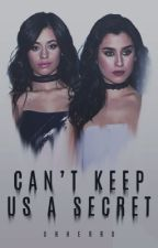Can't Keep Us a Secret (Camren) by uhherro