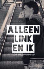 Alleen Link en ik by Troyesivanstalker