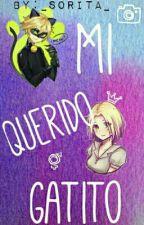 Mi Querido Gatito  [Chat NoirxReader] by _Sorita_