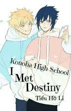 [SasuNaru] I Met Destiny by tieuholi1207