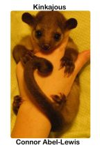 Kinkajous by ConnorAbelLewis
