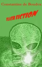 Flash Fiction (On hold till October) by constantine265