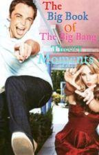 The Big Book Of The Big Bang Theory Moments! by BigBangTheoryFanfic