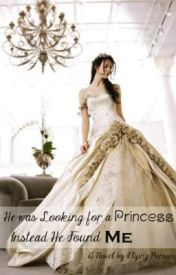 He Was Looking For A Princess  Instead He Found Me (Part I) by flying-person