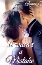 It Wasn't a Mistake. OMENTANEAMENTE SOSPESA.  by AriannaEna