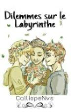 Dilemmes et préférences sur le Labyrinthe by CalliopeNvs