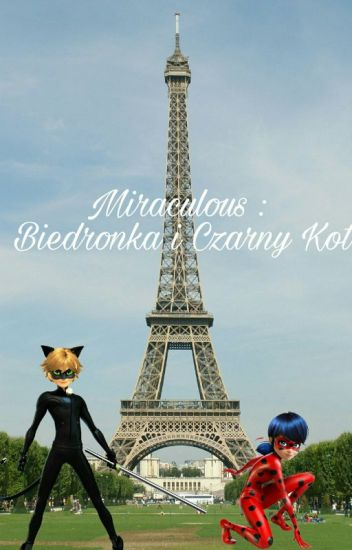 Miraculum Biedronka i Czarny Kot
