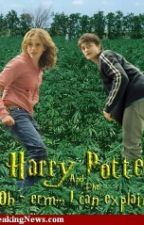 Dinge, die Ein Harry Potter Fan NICHT sagen darf by Lucy_Melfoy
