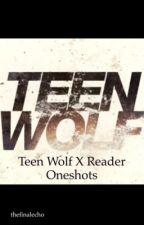Teen Wolf x Reader Oneshots by TheFinalEcho