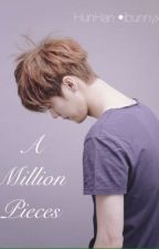 A Million Pieces  • HunHan • by ibunnyx