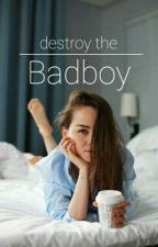 Destroy the Badboy by xxem_se
