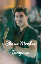 Shawn Mendes Imagines  by alexandraavm