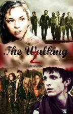 The walking Z by athziriuribe