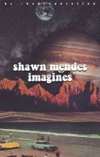 shawn mendes imagines by -badreputation