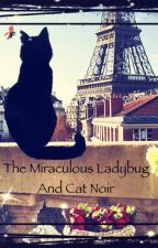 The miraculous ladybug and cat noir by The_Crimson_Rose