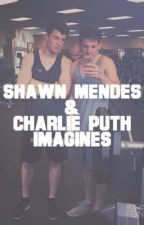 Shawn Mendes and Charlie Puth Imagines! by mendesxputh