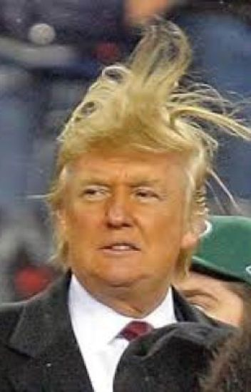Donald Trump Smut