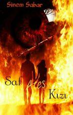 Saf Ateş Kızı (Tamamlandı) by Alenidania