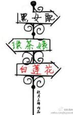 Hắc nữ phụ, trà xanh biểu, Bạch Liên hoa ( TS, nữ xứng ) Hoàn+ phiên ngoại by vansan