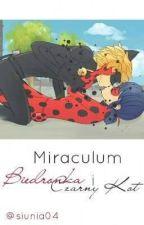 Miraculum: Biedronka i Czarny kot. by Panna_Potter