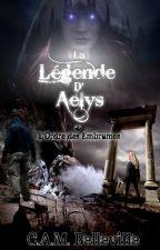 La Légende d'Aelys, tome 1 : L'Ordre des Embrumés by CAMBelleville