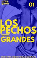 Los Pechos Grandes (EN EDICIÓN)  by TeAmoYTuLoSabes79