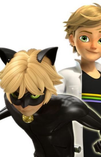 My Sweet Honeybee (Adrien Agreste/Chat Noir x Reader)