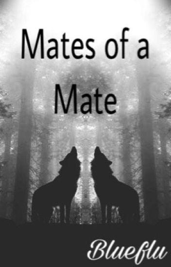 Mates of a Mate (bxbxbxbxb)