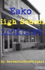 Esko High School Lockdown  by SarcasticSnowSpirit