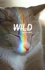 WILD« jalonso by sexjalonso