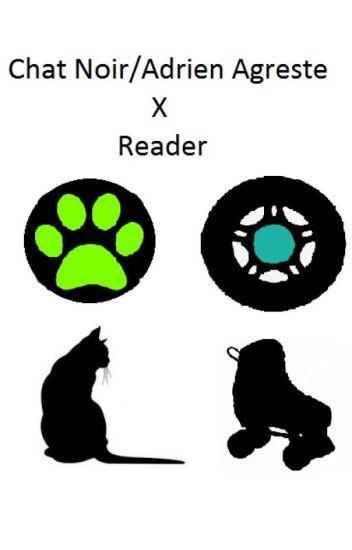 Chat Noir/Adrien Agreste x reader