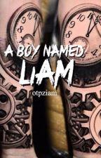 A boy named Liam  by otpziam