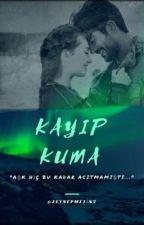 KAYIP KUMA by ZeynepMetin2