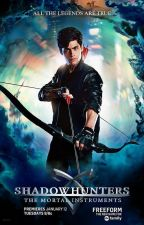 Alec Lightwood- love story  by muneipaula