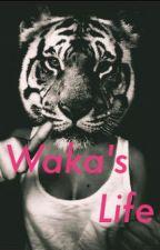 50 nuances de Waka by wakatepebabouune
