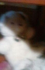 Teddybear Adventures by Fuzzy825
