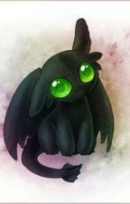 Why did this happen?.....(Toothless x reader)*ON HOLD SORRY* by CWEEMSODA-chan