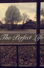 The Perfect Life  by McKaylaDawn2001