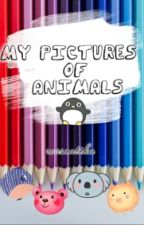 My Pictures Of Animals by rossaatika