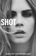 Shot to Pieces (HP) by killerlies