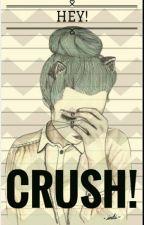 HEY! CRUSH! by Brookyu2016