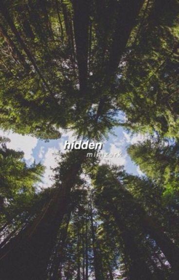 hidden | minizerk