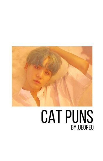 Cat Puns // YoonMin