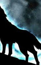 THE WOLF by CassYunJae909596