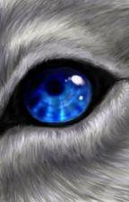 Werewolf by writerbee5