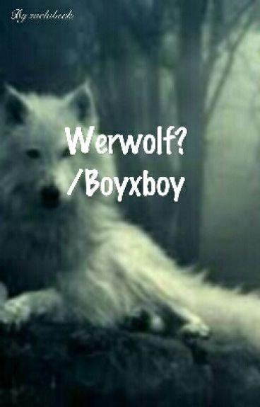 Werwolf?  / Boyxboy