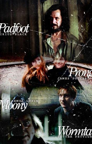 Remus Lupin X Reader X Sirius Black The Marauders and The Phoenix