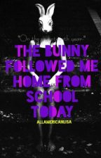 The Bunny Followed Me Home From School Today. by AllAmericanLisa