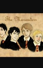 The marauders preferences/ imagines  by daisyg04